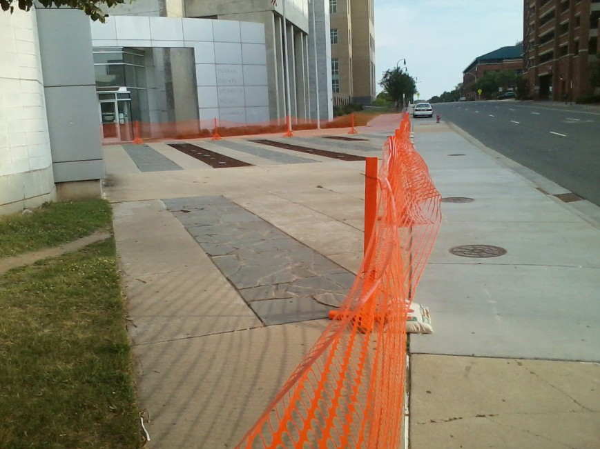 fencing at DCDF (1)